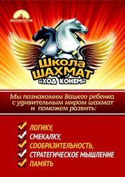 В городе Костанай открылся филиал школы по шахматам «Ход конем».